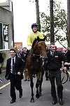 September 05, 2009: Sea The Stars with Mick Kinane aboard is led into the winners enclosure. The Tattersalls Millions Irish Champion Stakes. Leopardstown Racecourse, Dublin, Ireland.