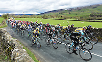 Picture by Alex Broadway/SWpix.com - 29/04/2016 - Cycling - 2016 Tour de Yorkshire, Stage 1: Beverley to Settle - Yorkshire, England - The peloton passes through the Yorkshire countryside.