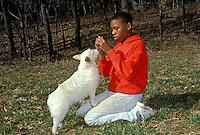 Boy training his eager white dog