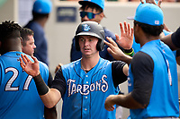 Tampa Tarpons Trey Sweeney (4) high fives teammates after scoring a run during a game against the Fort Myers Mighty Mussels on September 18, 2021 at Hammond Stadium in Fort Myers, Florida.  (Mike Janes/Four Seam Images)