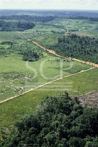 Amazonia, Brazil. Aerial view of Rainforest with large areas cleared for farming and cattle ranching; dirt road winding through ranch land.