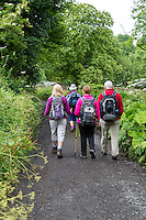 Cumbria, England, UK.  Hikers Following the Hadrian's Wall Footpath at Hare Hill, between Lanercost and Gilsland.