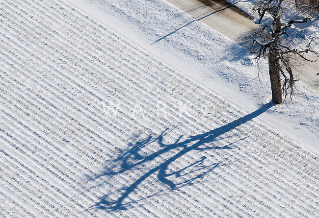 Winter field. Pueblo County, Colorado. Jan 2012