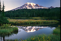 Mount Rainier from Reflection Lakes<br />