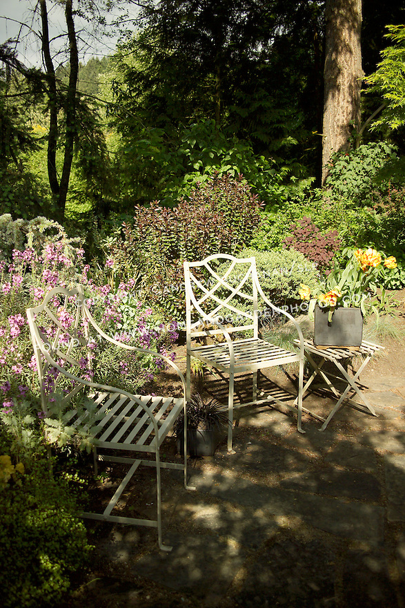in the dappled summer sunshine, metal patio chairs sit on a small residential, backard patio surrounded by lush woodland gardens