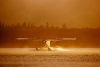 Bush plane takes off from Naknek lake in the morning fog, Katmai National Park, Alaska.