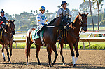 DEL MAR, CA  AUGUST 1: #5 Cover Version, ridden by Kyle Frey, in the post parade before the Clement L. Hirsch Stakes (Grade 1) Breeders Cup Win and You're In Distaff Division on August 1, 2021 at Del Mar Thoroughbred Club in Del Mar, CA.