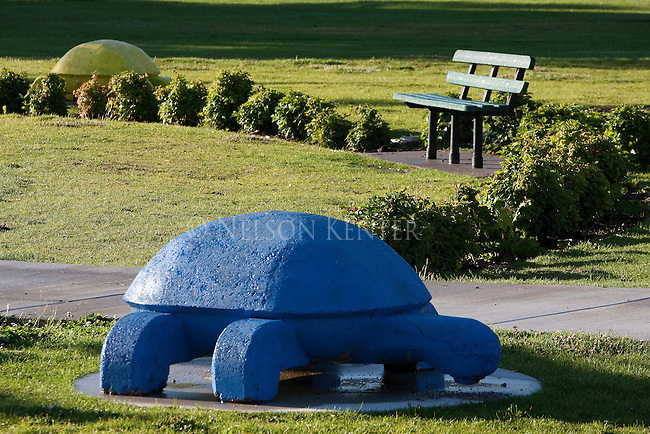 A painted concrete turtle decoration around the splash pool in Bonner Park in Missoula, Montana