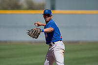 Chicago Cubs shortstop Aramis Ademan (11) during a Minor League Spring Training game against the Oakland Athletics at Sloan Park on March 19, 2018 in Mesa, Arizona. (Zachary Lucy/Four Seam Images)