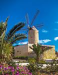 Malta, Insel Gozo, Xaghra: Windmuehle von 1725 | Malta, Island Gozo, Xaghra: windmill from 1725