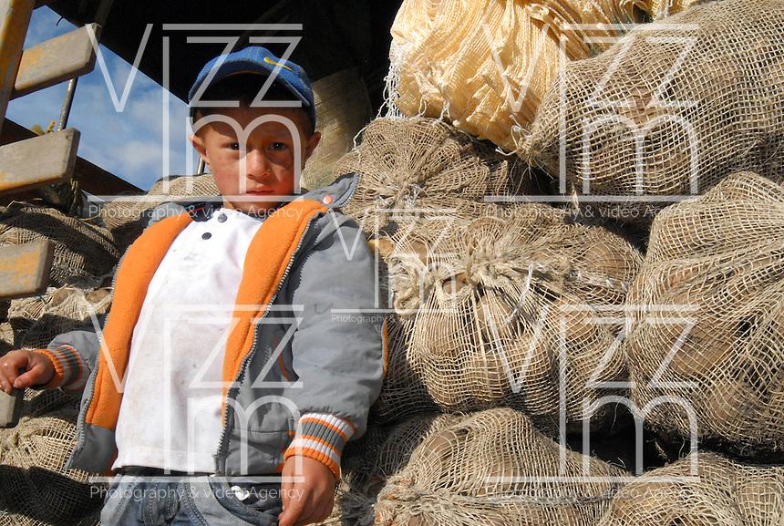 BOYACA -COLOMBIA- 21-10--2013.Ni–o hijo de cultivadores de papa.  Dignidad papera y agropecuaria', movimiento que lidero el paro agrario nacional en dias pasados, logro que el Gobierno comprara toda la papa de la produccion boyacense, para ubicarla en la poblacion mas vulnerable del pais, especialmente la que esta afectada por algun riesgo climatico, como en las zonas de Choco, San Andres, Magangue, Sincelejo y Florencia.  / Infant son of potato growers. Mumps and agricultural Dignity ', a movement that led the national agricultural strike in recent days, the government managed to buy all the potato production Boyaca, to place it in the country's most vulnerable population, particularly those who are affected by a climate risk and in areas of Choco, San Andres, Magangue, Sincelejo and Florence. .Photo: VizzorImage / Jose Miguel Palencia  / Stringer