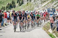 Team Ineos Grenadiers setting the pace in the peloton up the Col de la Colombière (HC/1618 m/11.7km@5.8%)<br /> <br /> 73rd Critérium du Dauphiné 2021 (2.UWT)<br /> Stage 8 (Final) from La Léchère-Les-Bains to Les Gets (147km)<br /> <br /> ©kramon