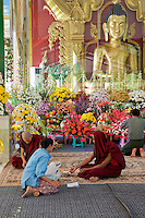 Myanmar, Burma.  Young Monks in Buddhist Shrine at the Zayar Thein Gyi Nunnery, near Mandalay.  Buddha statue inside glass enclosure.