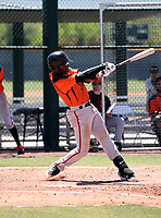 Alexander Canario - San Francisco Giants 2019 extended spring training (Bill Mitchell)