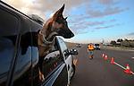 CCSO/NHP DUI checkpoint 080913