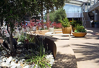 "San Diego International Airport, Terminal 2, ""The Green Build"", 2014. Attractive seating area with concrete benches, curved concrete walls and planters, drought-tolerant plants and palm trees. Patricia Trauth, Landscape Architect."
