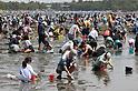 People enjoy clamming on the beach in Yokohama