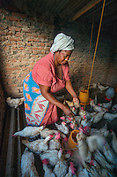 AWright_Tanz_008939.jpg<br />