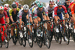 The peloton including Daniel Oss (ITA) and Peter Sagan (SVK) Bora-Hansgrohe during Stage 1 of Tour de France 2020, running 156km from Nice Moyen Pays to Nice, France. 29th August 2020.<br /> Picture: Bora-Hansgrohe/BettiniPhoto | Cyclefile<br /> All photos usage must carry mandatory copyright credit (© Cyclefile | Bora-Hansgrohe/BettiniPhoto)