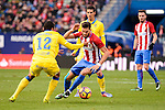 Atletico de Madrid Yannick Carrasco and UD Las Palmas Michel Macedo during La Liga match between Atletico de Madrid and UD Las Palmas at Vicente Calderon Stadium in Madrid, Spain. December 17, 2016. (ALTERPHOTOS/BorjaB.Hojas)