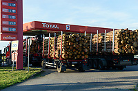 GERMANY Plau, timber trucks at Total fuel station / DEUTSCHLAND, Plau, Holzlaster an Total Tankstelle