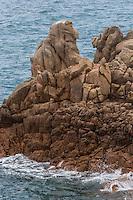 Royaume-Uni, îles Anglo-Normandes, île de Guernesey, Castel: Cobo Bay, côte rocheuse // United Kingdom, Channel Islands, Guernsey island, Castel: Cobo Bay