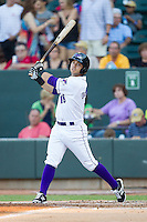 Joey DeMichele (18) of the Winston-Salem Dash follows through on his swing against the Carolina Mudcats at BB&T Ballpark on June 6, 2014 in Winston-Salem, North Carolina.  The Mudcats defeated the Dash 3-1.  (Brian Westerholt/Four Seam Images)