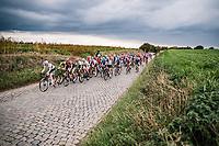 Peloton over the Holleweg Cobbles<br /> <br /> 17th Ronde van Vlaanderen 2020<br /> Elite Womens Race (1.WWT)<br /> <br /> One Day Race from Oudenaarde to Oudenaarde 136km<br /> <br /> ©kramon