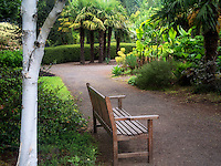 Bench in Oregon Garden. Oregon