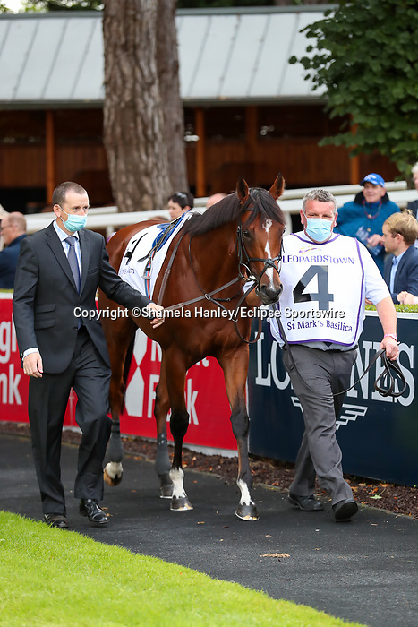 September 11, 2021: St. Mark's Basilica (FR) #4 in the walking ring prior to the Group 1 Irish Champion Stakes on the turf on Irish Champions Weekend at Leopardstown Racecourse in Dublin, Ireland on September 11th, 2021. Shamela Hanley/Eclipse Sportswire/CSM