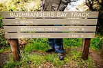 Image Ref: CA934<br /> Location: Bushrangers Bay Track<br /> Date of Shot: 07.09.19