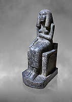 Ancient Egyptian statue of princess Redji, grandorite, Saqqara, Old Kingdom, 3rd Dynasty (2592-2543 BC). Egyptian Museum, Turin. grey background.<br /> <br /> The inscriptions at the base of the statue indicates that the statue is of the Kings Daughter named Redji. Never intended as a faithful depiction of the deceased , the statue was placed in the tomb to substitute for the deceased. The statue is in the typical rigid style of the old kingdom with a voluminous wig.