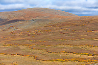 Skookum pass, Seward Peninsula, western Arctic, Alaska. During summer heat, underlying frozen permafrost ground acts as a sliding plane along which the soil can slowly move down slope over time.