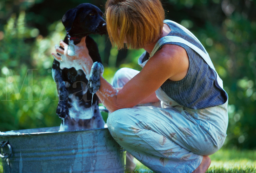 Woman giving her pet dog a bath.