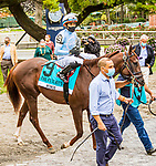 OCT11, 2020 : Momos in the Grade 3 Futruity Stakes, for 2-year olds on the turf, at Belmont Park, Elmont, NY.  Sue Kawczynski/Eclipse Sportswire/CSM