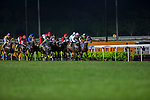 MAY 17 ,2015: Dan Excel,ridden by Tommy Berry,wins the Singapore Airline International Cup at Kranji in Kranji,Singapore. Kazushi Ishida/ESW/CSM
