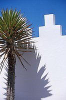 Afrique/Maghreb/Maroc/Essaouira : Villa Maroc, détail de la façade 10 rue Abdellah-Ben-Yacine