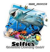 Howard, SELFIES, paintings+++++Dolphin selfie,GBHRPROV158,#Selfies#, EVERYDAY ,underwater,maritime,dolphins