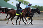 April 26, 2015 Kentucky Derby and Oaks workouts, Churchill Downs.  Far Right, owner Harry T. Rosenblum and Robert LaPenta.  Trainer Ron Moquett.  By Notional x Zindi (Vindication)  ©Mary M. Meek/ESW/CSM