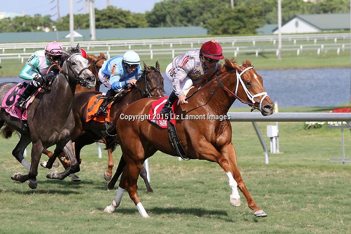 January 09, 2016: #1 Sandiva (IRE) with jockey Javier Castellano on board wins the Marshua's River Stakes G3 at Gulfstream Park in Hallandale Beach, FL.  Liz Lamont/ESW/CSM