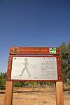 Israel, Negev, the Health Trail in Nitzana forest