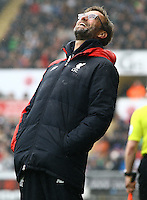 Liverpool manager Jurgen Klopp laughs at a refereeing decision during the Barclays Premier League match between Swansea City and Liverpool played at the Liberty Stadium, Swansea on 1st May 2016
