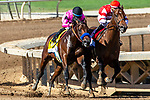 """ARCADIA, CA. SEPTEMEBER 29:  Going into the stretch #4 Game Winner, ridden by Joel Rosario, is neck and neck with #1 Rowayton, ridden by Florent Geroux, in the American Pharoah Stakes (Grade l) """"Win and You're In Breeders' Cup Juvenile Division"""" on September 29, 2018 at Santa Anita Park in Arcadia, CA.  (Photo by Casey Phillips/Eclipse Sportswire/CSM)"""