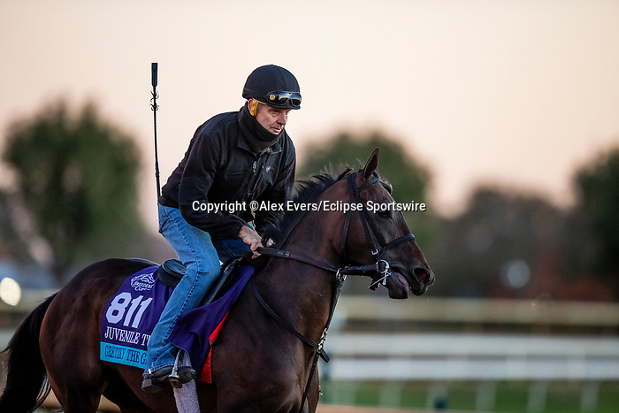 November 4, 2020:  Gretzky The Great, trained by trainer Mark E. Casse, exercises in preparation for the Breeders' Cup Juvenile Turf at Keeneland Racetrack in Lexington, Kentucky on November 4, 2020. Alex Evers/Eclipse Sportswire/Breeders Cup