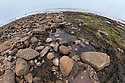 Rocky intertidal zone showing rockpools at low tide, Northumberland, UK. May.