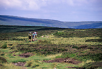 Wales, Offa's Dyke Footpath.  Hikers on Hatterrall Ridge, above Llanthony.
