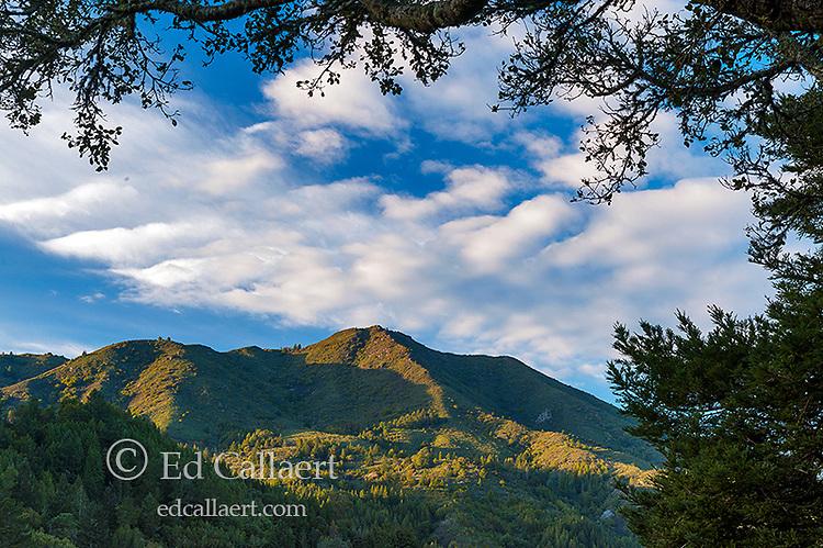 Mount Tamalpais, Mount Tamalpais State Park, Marin County, California