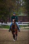 LOUISVILLE, KY - MAY 02: Trainer Bill Mott on track at Churchill Downs on May 2, 2018 in Louisville, Kentucky. (Photo by Alex Evers/Eclipse Sportswire/Getty Images)