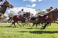 Horses at the start o fthe Kenya Derby at the Ngong Racecourse. Lesley Sercomb won the race riding the horse Westonian.Nairobi, Kenya. April 14, 2013. Brendan Bannon