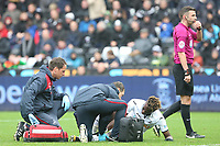 Tammy Abraham of Swansea City receives treatment during the Premier League match between Swansea City and Leicester City at The Liberty Stadium, Swansea, Wales, UK. Saturday 21 October 2017